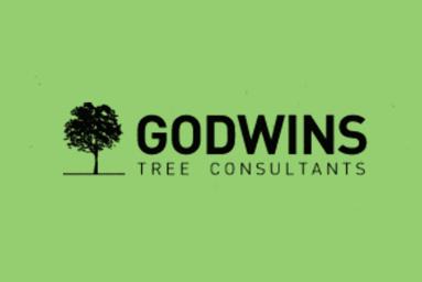 Godwins project