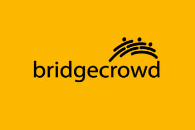 bridgecrowd project