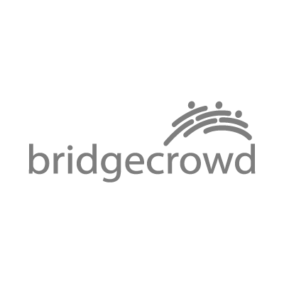 bridgecrowd