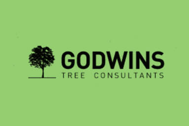 Godwins project